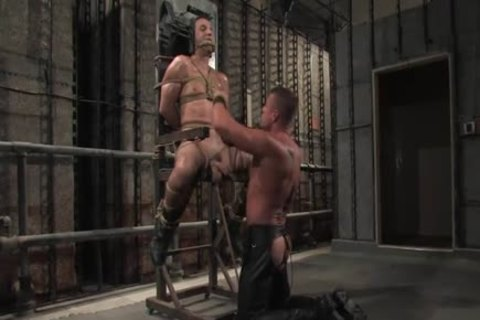 slave fastened Up With A Full Erection