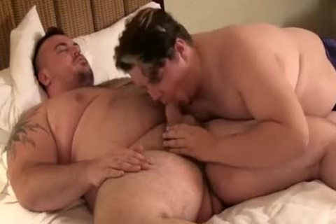 Two  chubby's Have  joy At Hotel
